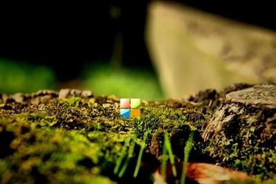 Desktop background of Microsoft's new 2012 logo on a macro photo