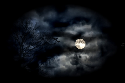 High def wallpaper of the moon with clouds,bats and tree.